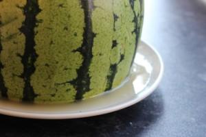 using up watermelon